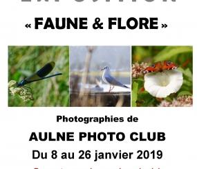 Exposition «FAUNE & FLORE» du 8 au 26 janvier 2019 à Polysonnance